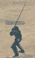 Picture of Black Soldier