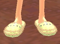 Equipped  Slippers viewed from the front